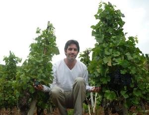 Les Vins Magnifiques