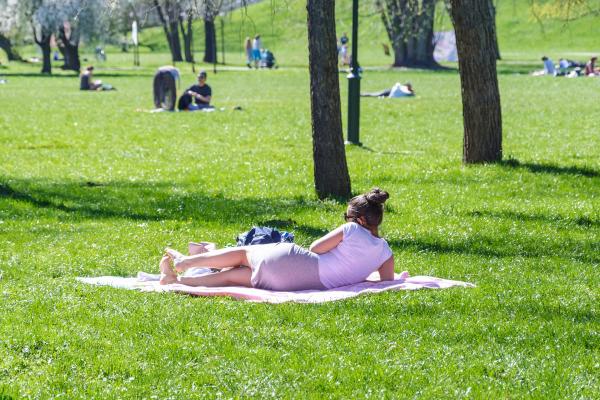 Repos au parc © photoMIX company / Pixabay