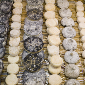 Fromages aux Halles de Lyon Paul Bocuse © Tristan Deschamps