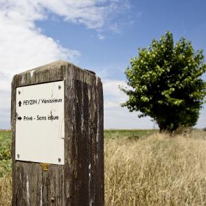 Plateau des grandes terres © www.b-rob.com