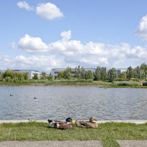 Parc Technologique St Priest ©www.b-rob.com