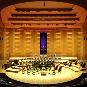 Auditorium - Lyon - Niko RODAMEL