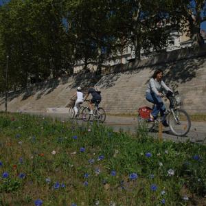 A vélo sur les Berges du Rhône © Jack Leone / Grand Lyon
