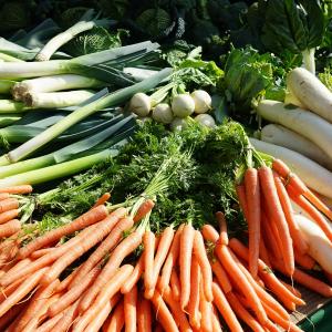 Légumes de saison © Pixabay- 318149 - Hans