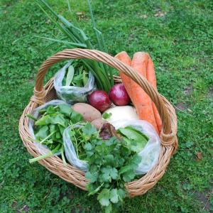 Panier de légumes frais © Judith Bogdan /Pixabay
